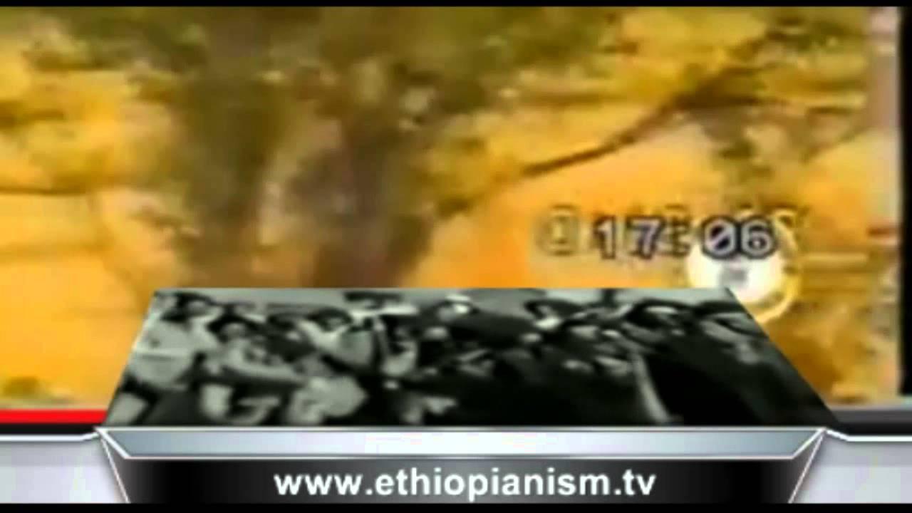 EPPF 16th Anniversary 1998-2014
