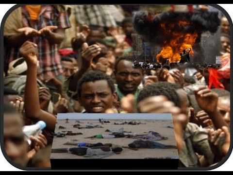 2 Ethiopians Killed 11 wounded in Senna Yemen
